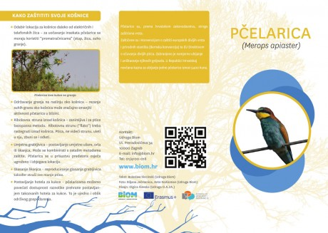 Brochure European Bee-eater