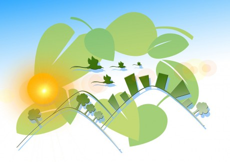 Ecology Nature Conservation Environmental Protection