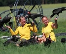 Copyright Waldrappteam | LIFE Northern Bald Ibis